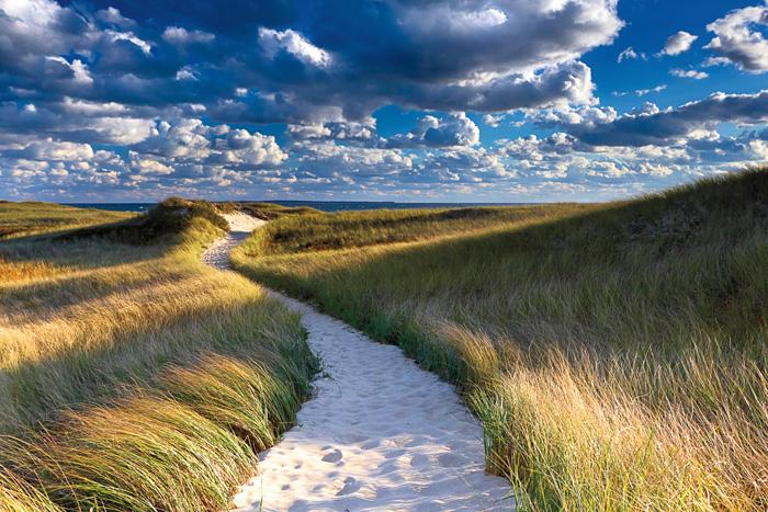 Philbin Beach Path