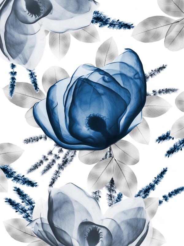 Invigorating Beauty II