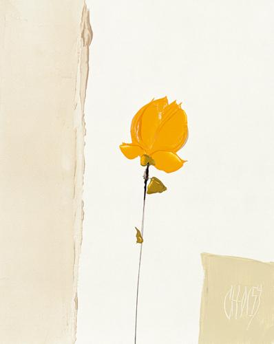 La petite rose jaune