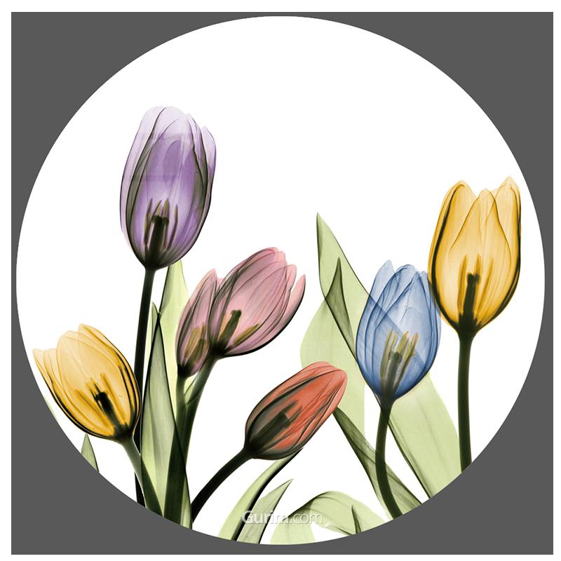 Tulipscape I
