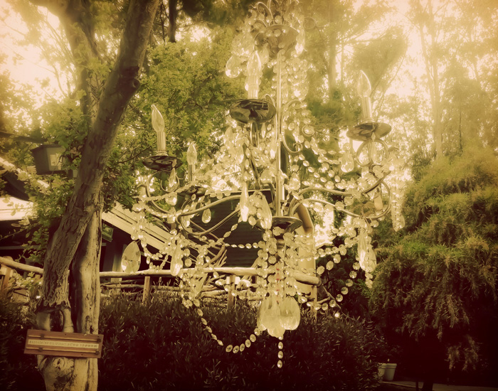 Dreamy Chandelier I