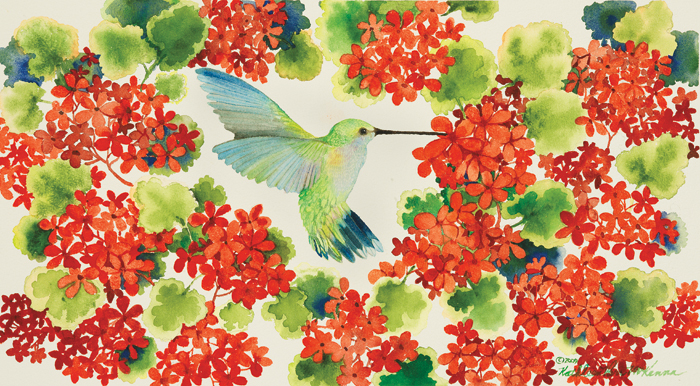 Hummingbird In The Red