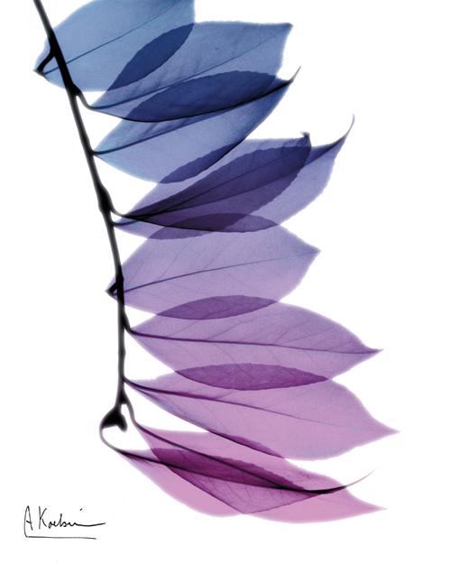 Camelia Leaf in Purple