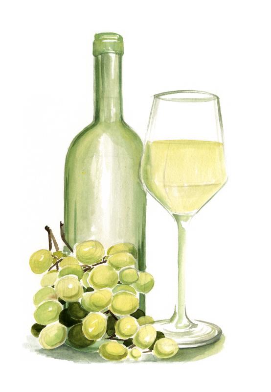 Wine Watercolor II