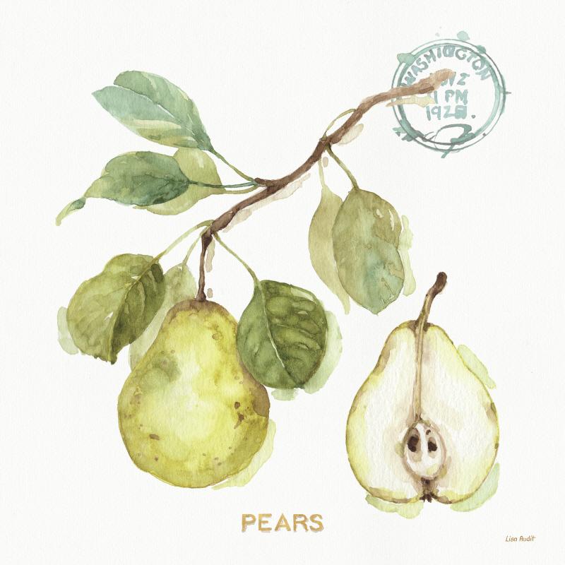 My Greenhouse Fruit I