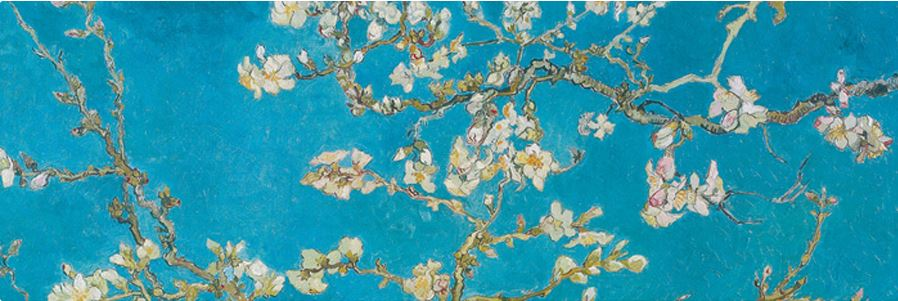 Almond Branches in Bloom, San Remy, detail