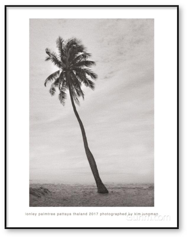 lonley palmtree (pattaya thaland 2017)