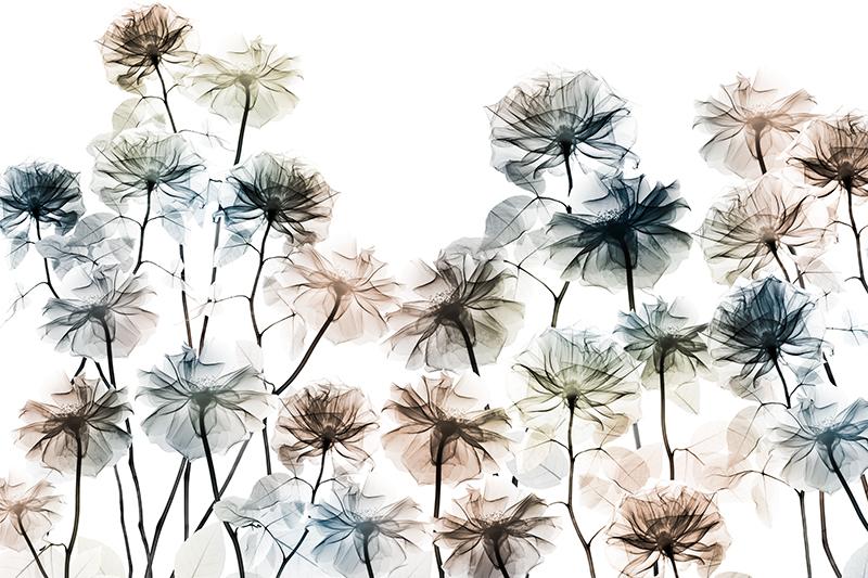 Energetic Flower Bed 1