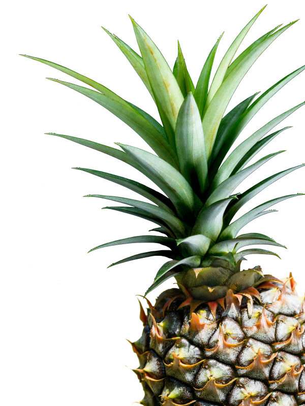 Pineapple (color)