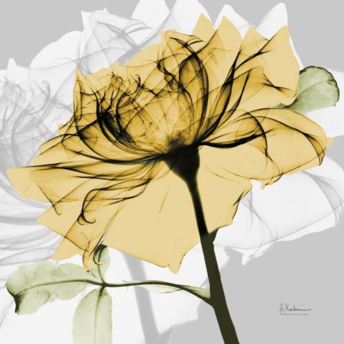 Rose in Gold V