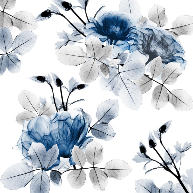Indigo Bouquets II