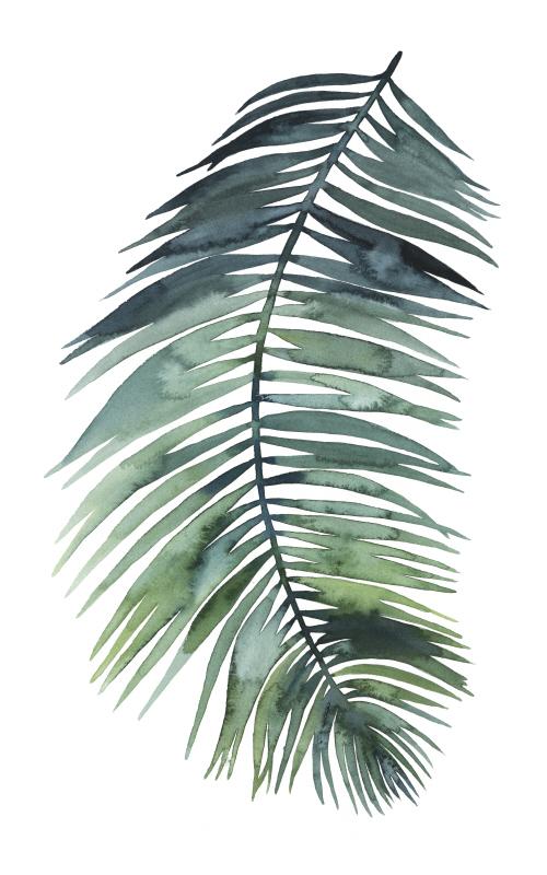Untethered Palm VII II