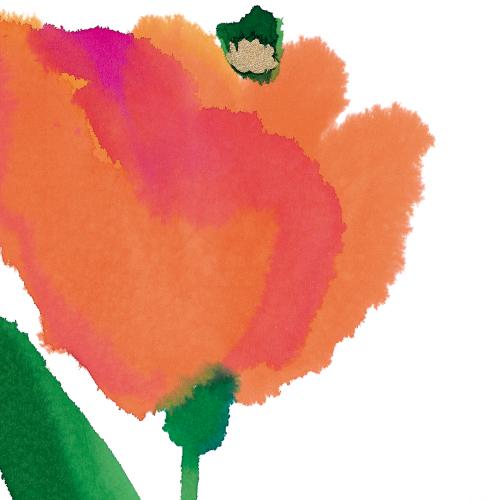 Blooming (scarlet)