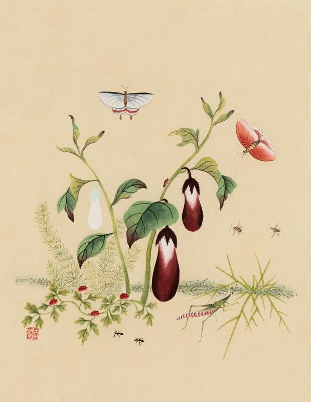 신사임당 (초충도_가지와 방아개비)