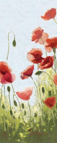 Mountain Poppies II
