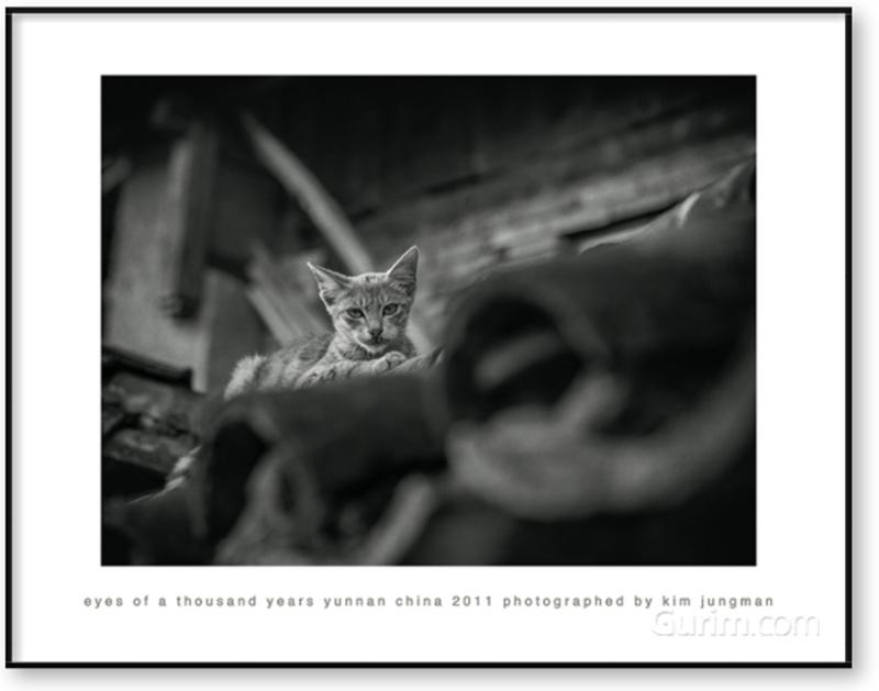 eyes of a thousand years (yunnan china 2011)