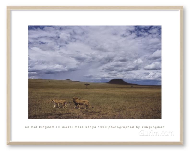 animal kingdom Ⅲ (masai mara kenya 1999)