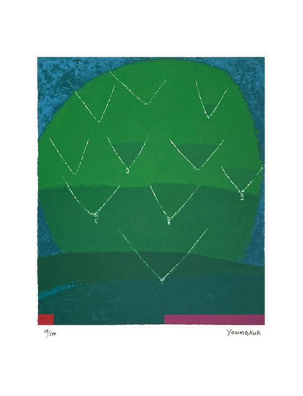 초록나무 (150 Editions)