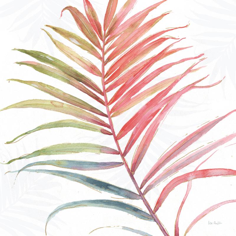 Tropical Blush VI