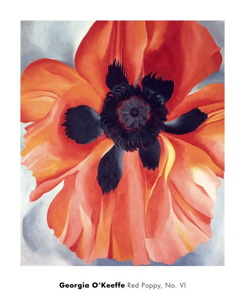 Red Poppy, No. VI, 1928