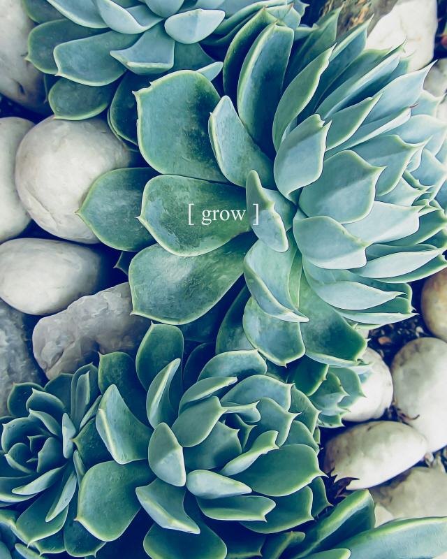 Grow Calm II
