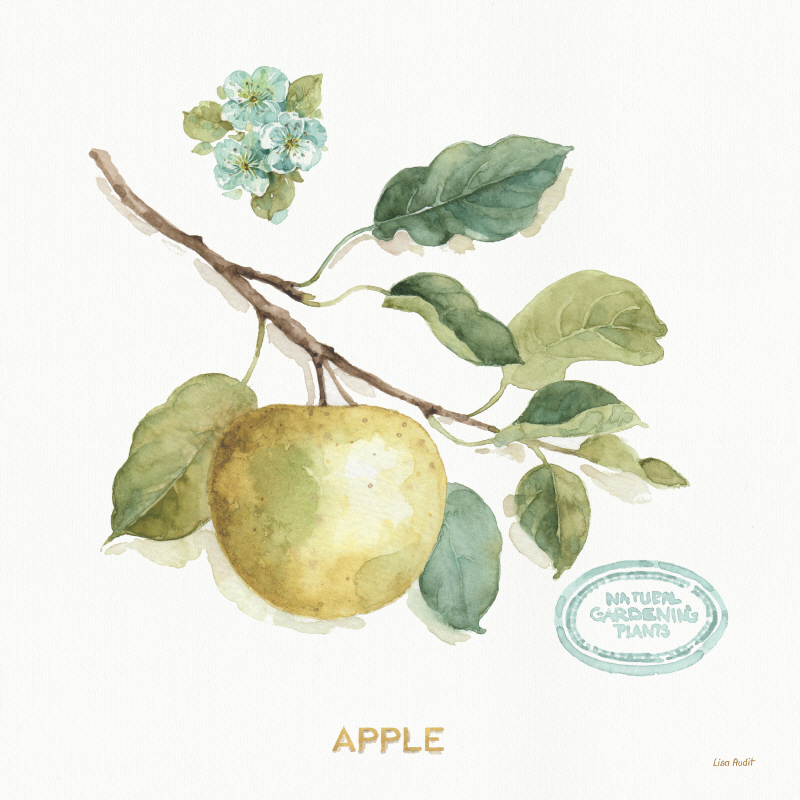 My Greenhouse Fruit IV