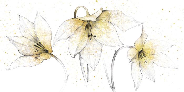 Gilded Graphite Floral Trio