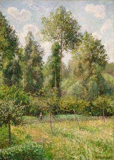 Poplars, Eragny