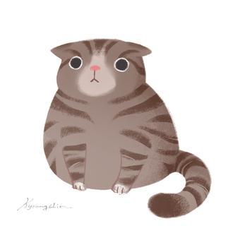 Plump cat