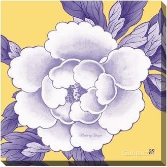 Candy Peony Series 6 Buttery Grape