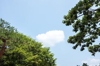 지나가는 구름