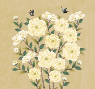 꽃가지 네츄럴_단노랑