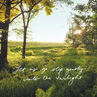 Firefly Meadows I