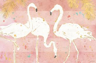 Flamingo Fever IV