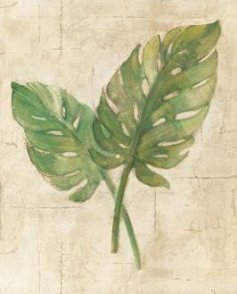 Monstera Leaves Neutral