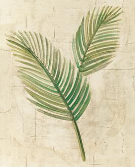 Sago Palm Leaves Neutral