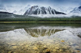 Waterfowl Lake I