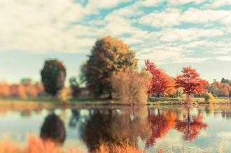Fall Ottawa II