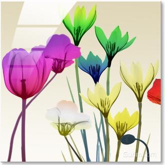 Floral Calm Pop Mate