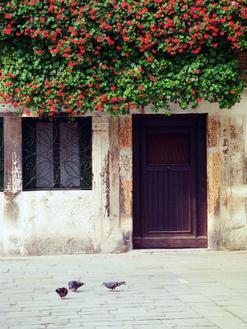 Venice Floral Overhang
