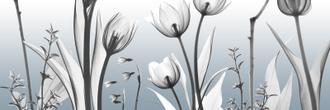 Heavenly Botanicals