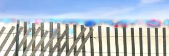Beachscape II