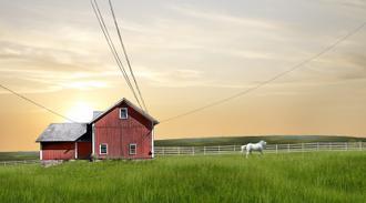 Farm & Country IV