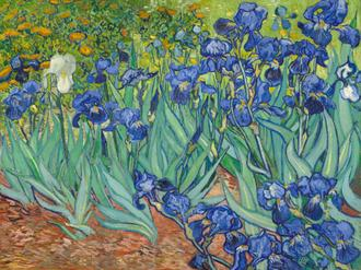 Irises, 1889