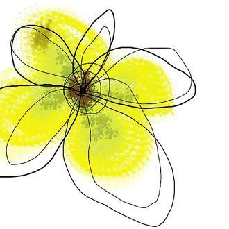 Yellow Petals Four
