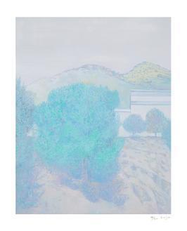 올리브 나무 (40 Editions)