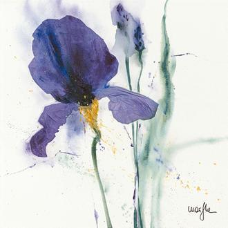 Iris I