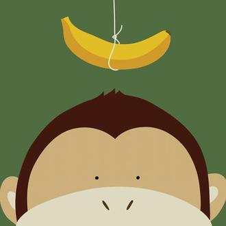 Peek-a-Boo Monkey