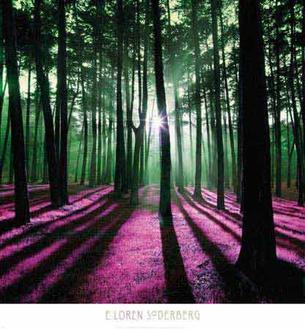 Technicolor Trees I