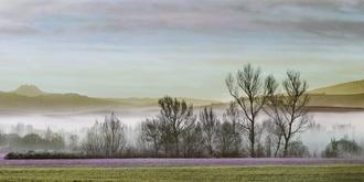 Fog Orcia Valley